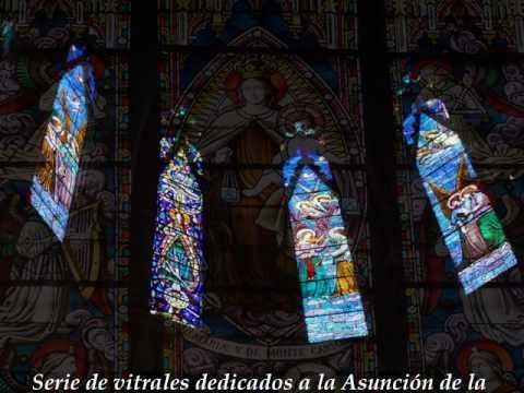 la luz de la catedral