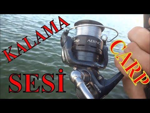 Balık Avı KALAMA SESİNE DOYDUK Carp Run Compilation Float Fishing For Carp