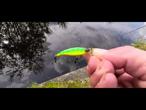 Urban Canal Fishing Rochdale Manchester Perch And Pike Foxrage Slick Stick