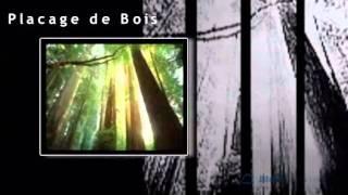 Placages De Bois - St Agathe Des Monts, Quebec