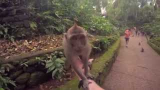 Awesome extreme travel in Indonesia with Mapala. Short.