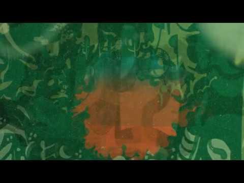 "Auntie Flo ""The Soniferous Garden"" official video"
