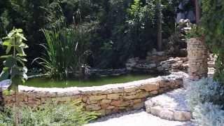 Продается дом в саду. Севастополь. Часть-3 (Сад).(, 2013-08-22T10:16:08.000Z)