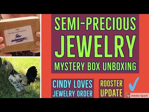 MYSTERY GEMSTONE JEWELRY BOX UNBOXING | Cindy Loves Jewelry  Order | Rooster Update | Silver Gold
