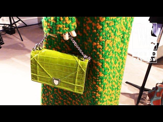 Dior Fall-Winter 15-16 Paris Fashion Week