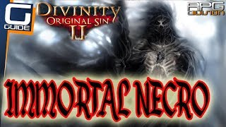 DIVINITY ORIGINAL SIN  2 - IMMORTAL NECROMANCER BUILD