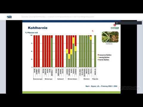 praxisdialog.agrar: #08   Gezielter Zwischenfruchtanbau – Unkraut- und Krankheitsdruck reduzieren
