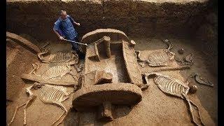 8 Sorprendentes hallazgos arqueológicos que fueron encontrados por accidente