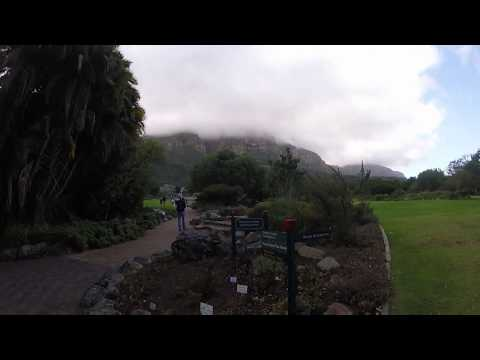 Kirstenbosch Botanical Gardens 22