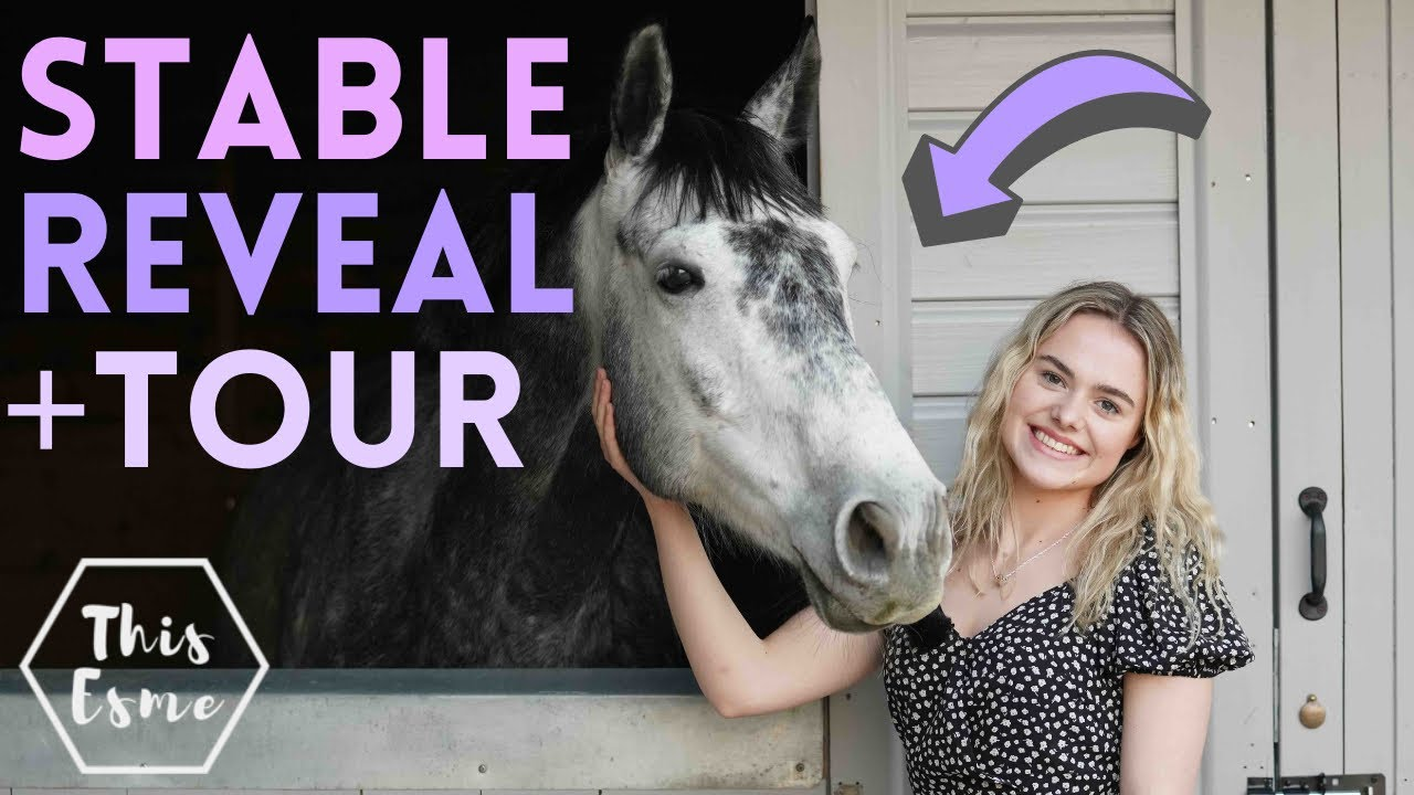 Download Stable Reveal + Barn Tour! Stable Renovation Series Ep3 | This Esme