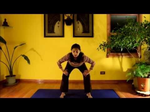 World Wellness Wish - January 2015 Challenge Day 2 of Yoga-Pilates Practice with Vidya Nahar
