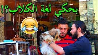 EJP مقالب في محلات بيع الحيوانات في الاردن – Pranks in pet shops!