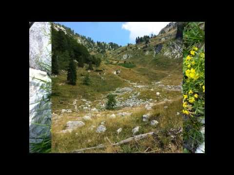 Trip to Alpine Lake Krn...Slovenian Nature