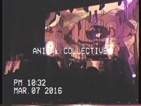 ANIMAL COLLECTIVE OAKLAND