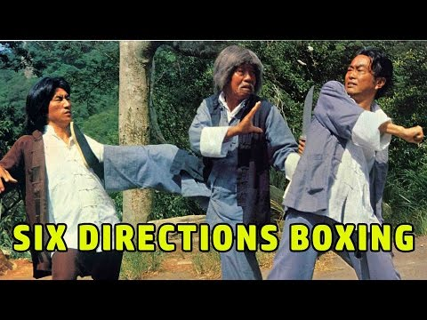 Wu Tang Collection - Six Directions Boxing