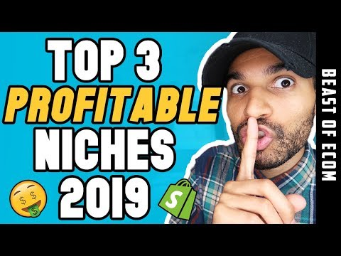 TOP 3 Shopify Niches 2019 REVEALED!! - (PROFIT IN THESE) thumbnail