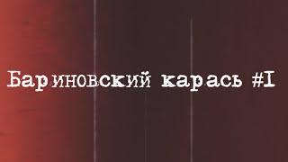 Бариновский карась #1