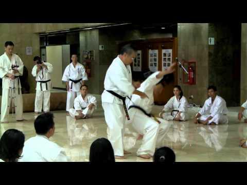 Kyokushin Kan Indoneshia Jakarta 2011