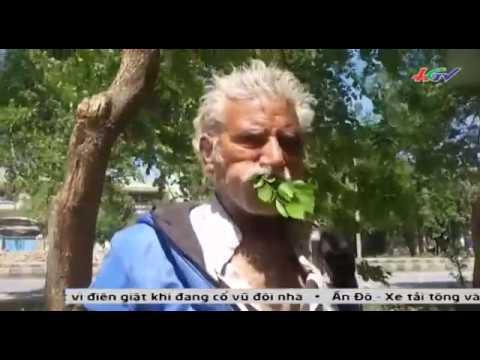 Pakistan   Người đàn ông ¼ thế kỷ ăn cây lá để sống