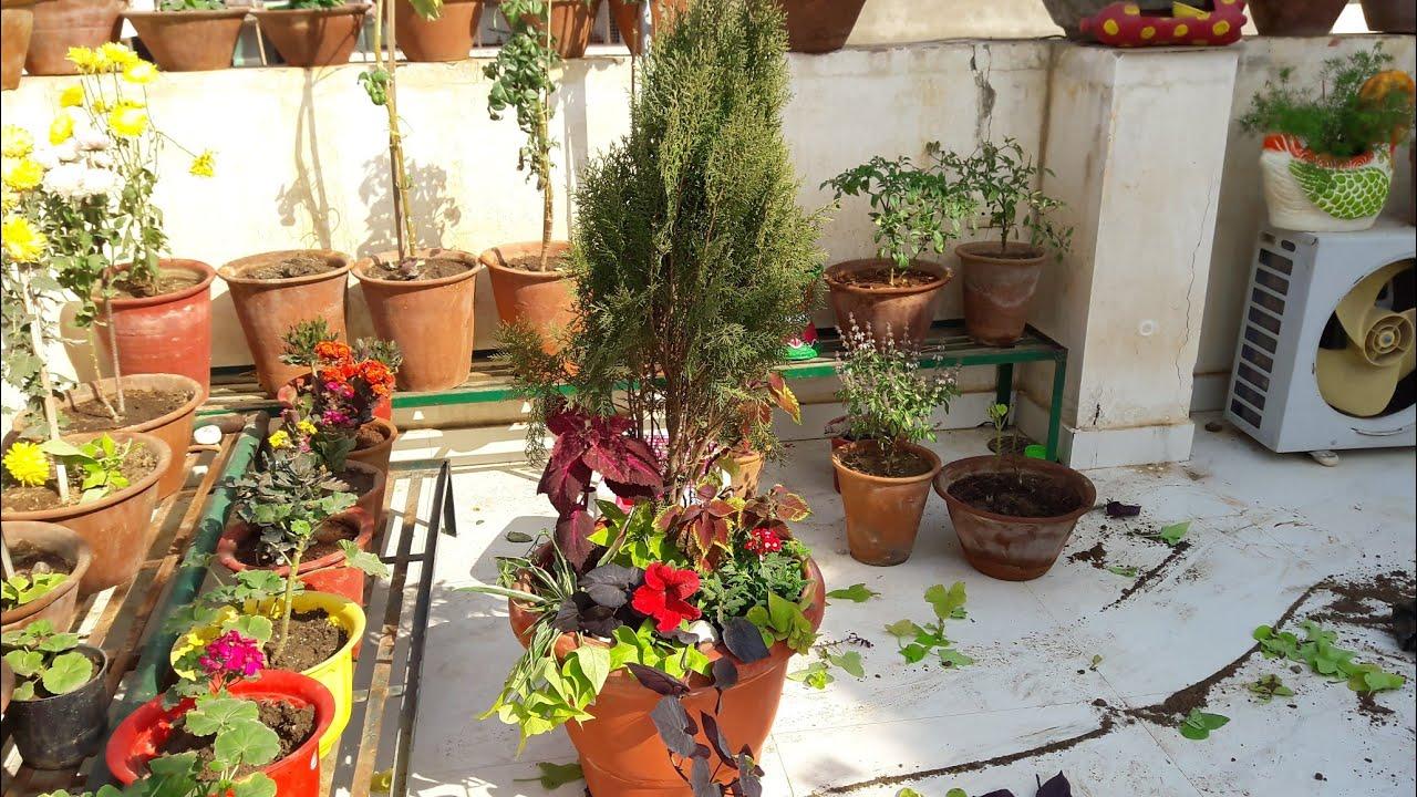 Container Garden // Creative Container Garden Idea || Fun Gardening ...