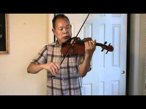 Chinese Violin at $103 dollars won on eBay auction