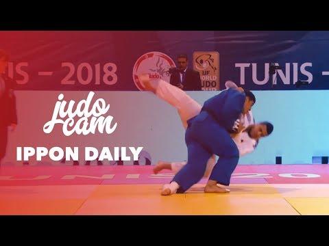 Ippon Daily   Javad Mahjoub