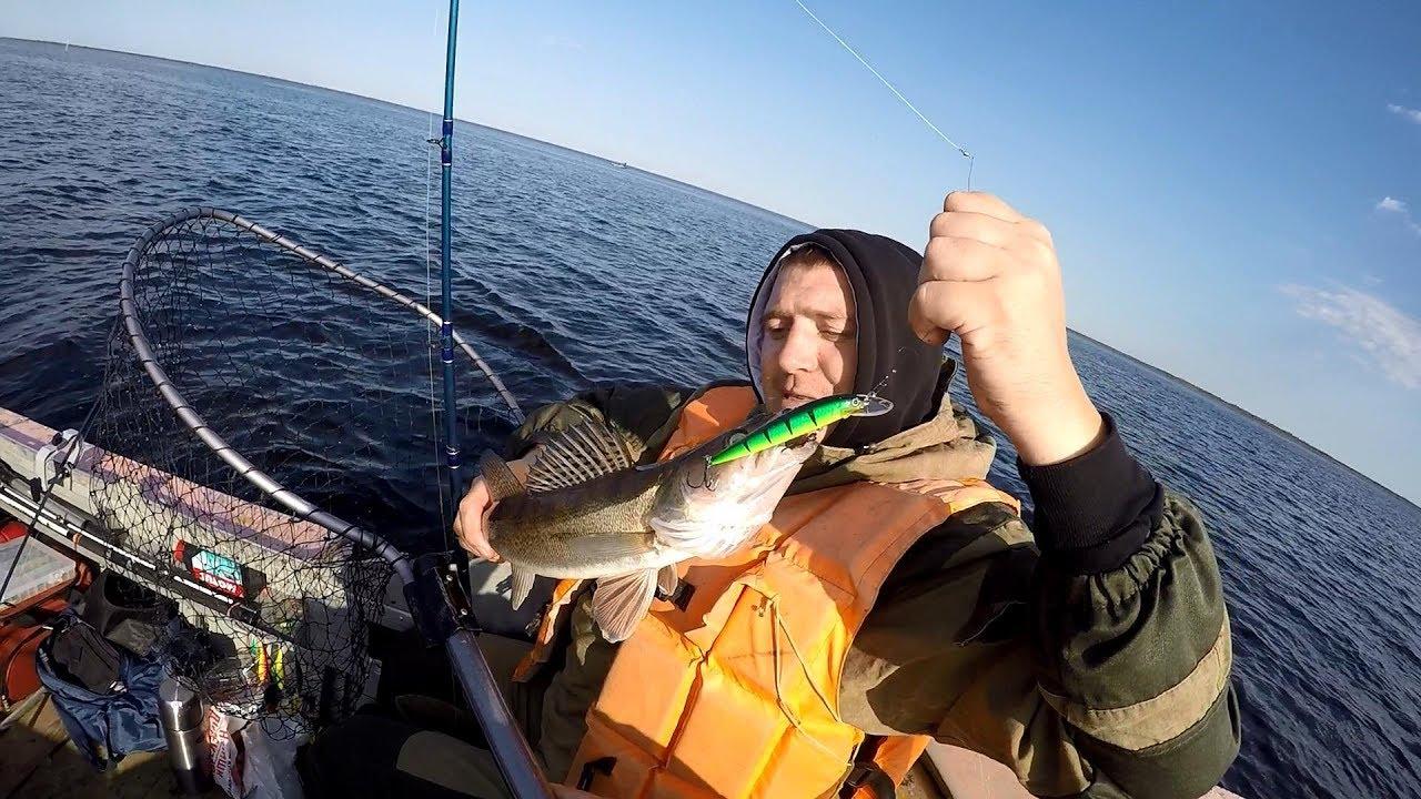 клева рыбы на свири
