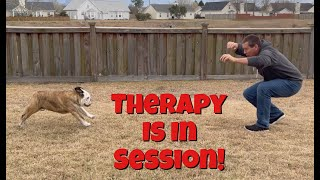 Reuben the Bulldog: Dad's Reuben Therapy