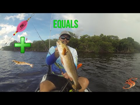 Kayak + Popping Cork + Shrimp = Redfish Bonanza