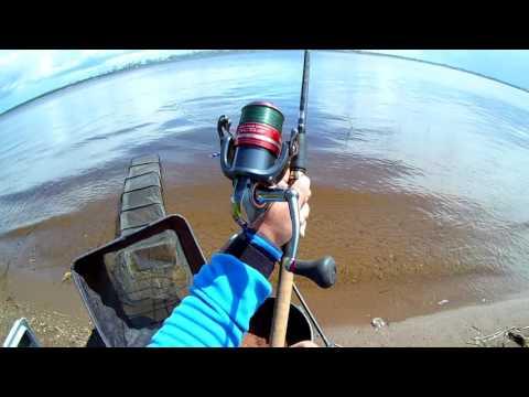 эхолоты практик для рыбалки с лодки видео