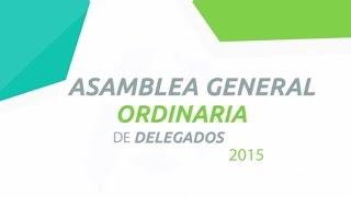 Asamblea Progressa 2015