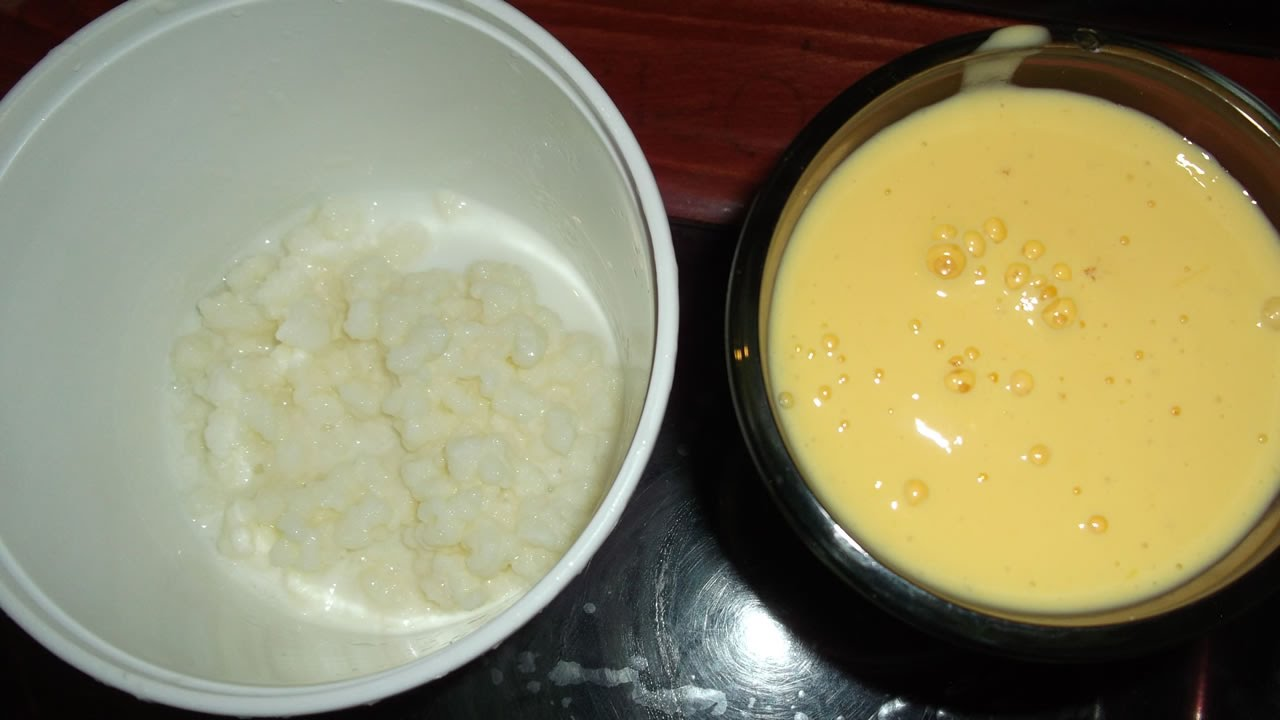 Como hacer yogurt natural en casa con bulgaros de leche o - Como hacer mousse de yogurt ...