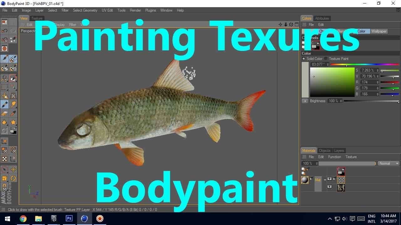 Texture Paint Fish in Body paint 3D Tutorial - part 01 - YouTube