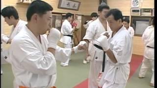 kyokushin karate.