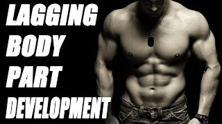 Lagging Body Part? Keys to Weak Body Part Development