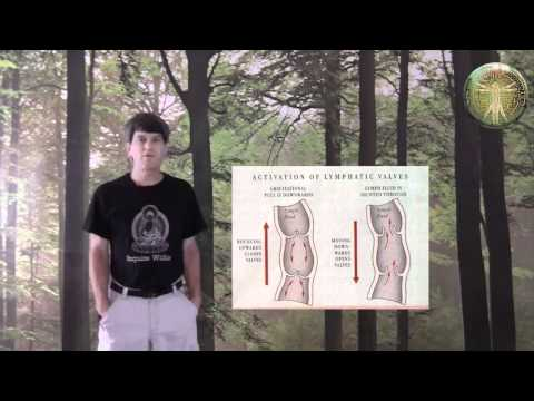 HOW TO REBOUND EXERCISE