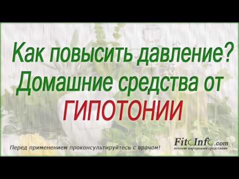 Аралия маньчжурская: состав, свойства и лечение аралией