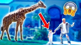 SURPRISING MINI JAKE PAUL WITH A GIANT GIRAFFE!! (CUTE)