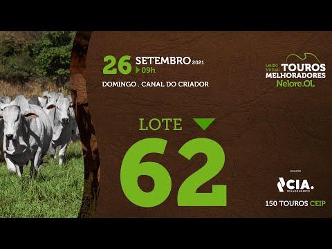 LOTE 62 - LEILÃO VIRTUAL DE TOUROS 2021 NELORE OL - CEIP
