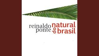 Bossinha