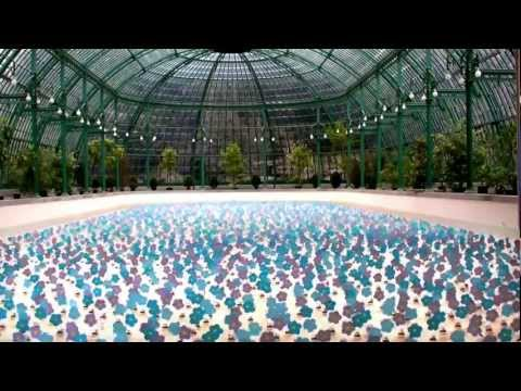 Dancing Solar Flowers Video - Royal Greenhouses of Brussels - Sustainable Development Art