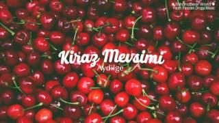 [Lyrics+Vietsub] Kiraz Mevsimi - Aydilge (Cherry Season OST)