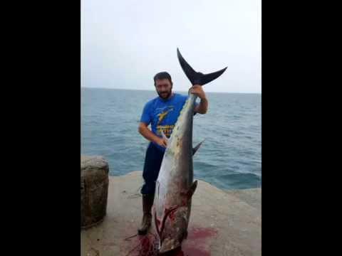 Bluefin Tuna fishing in Ulcinj, Montenegro - From the seashore (86,5kg) - 20.10.2015