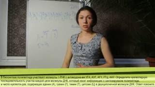 Задачи по цитологии: Задачи на построение иРНК, тРНК и аминокислотной цепочки 1