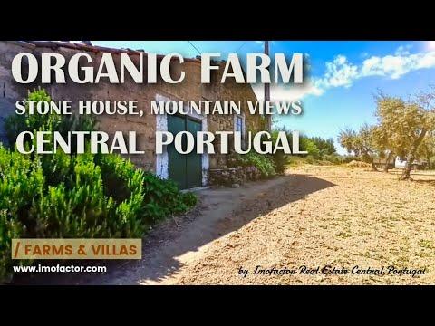 Organic Farm with Stone House, Lake, Mountain Views / Central Portugal / Póvoa da Atalaia | € 65.000