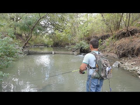 Small Creek Fishing For Bass! Old Creek Mill Dam. How To Fish A Muddy Creek. Which Lure Works?