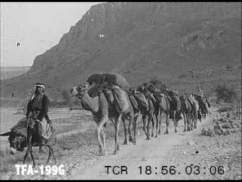 The Valley of the Shechem, 1920s