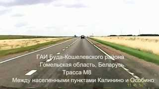 ГАИ Буда-Кошелевского района бьет рекорды.