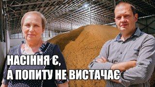 Насіннєве господарство в Україні: якість зерна, експерименти в полях та технологія | Куркуль