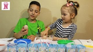 Яйца ЧЕЛЛЕНДЖ красим яйца к Пасхе Корзинки с заданиями НЕ РАЗБЕЙ ЯЙЦО Eggs Challenge
